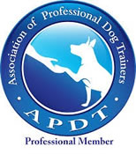 puppy-training-apdt
