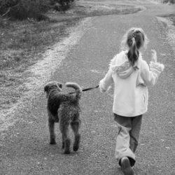 Personal-Training-2-mornington-peninsula-paw-behaviour